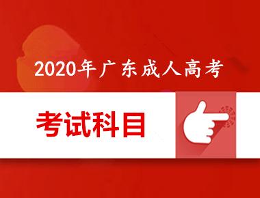 2020年千赢app手机版下载千赢官网qy88vip考试内容